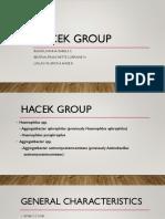 Hacek Group