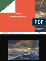 8 Mar Portugues