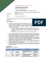Informe Horas Colegiadas-111