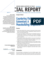 CVE a Peacebuilding Initiative