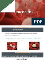 Equipo 2 SCyH Presentacion Leucocitos