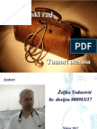 Tumori Grlica i Tela Uterusa Zeljko Todorovic1