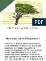 Wind Buffer