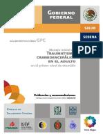 traumatismo craneocefalico adultos mayores.pdf