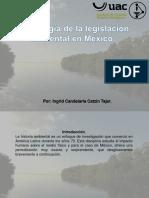 CRONOLOGÍA DE LA LEGISLACION AMBIENTAL EN MEXICO.pptx