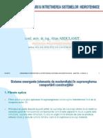 AA-curs ucish-09.pdf