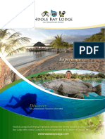 Digital Brochure Ndole Bay