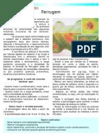 doenças do cafeeiro (folder).pdf