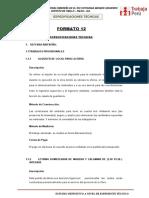 Formato 12 - Especificaciones Tecnicas Ok
