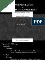 Anatomía & Fisiología- Unidad 1