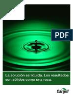 Spanish B100S the Solution is Liquid Mar2013 1