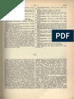 revai20_2.pdf