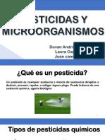 Pesticidas y Microorganismos