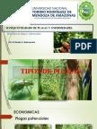 Tipos de plagas y enfermedades.pptx