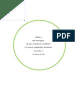 Paola Aranís f. Control 6 Sist, Integrado