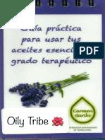 Guia Practica CG 2016