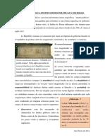 Temas Cultura Roma