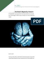 To Unlock the Brain's Mysteries, Purée It – New York Times Magazine – Medium