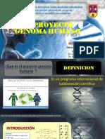 Proyecto Genoma Humano Yhonyy