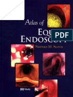 Nathan M.slovis - Atlas of Equine Endoscopy - 2004
