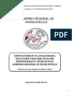 546029 Bases de La Primera Convocatoria de Practicas - 2018