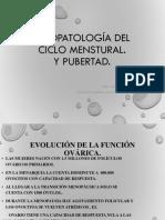 Fisiopatología Del Ciclo Mennstrual 6o Año