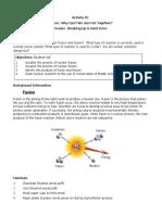 Fusion Fission Lab