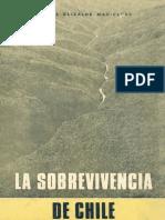 La sobrevivencia de Chile - Rafael Elizalde Mac-Clure - Artículo.pdf