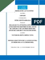 TAREA FINAL AMPARO.docx
