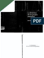 Anzieu-cap5.pdf