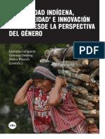 Modernidad Indigena Indigeneidad e Innovacion Social Desde La Perspectiva Del Genero