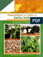 Adaptabilidad Del Sacha Inchi en Jequetepeque 1.1