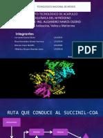 Isoleucina, Valina y Metionina (2)