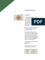 Carga Eléctrica.docx