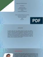 Tercera Entrega Del Portafolio, Teorias de Las Organizaciones