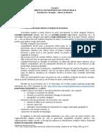 6.Curs DPI - Inventia - Subiect Si Obiect