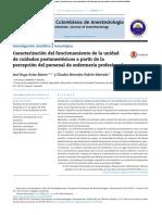 Caracterización del funcionamiento de la unidad de cuidados postanestesicos a partir de la percepcion del personal de enfermeria profesional