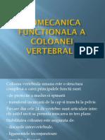 Biomecanica functionala Coloana
