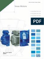 Teste isolação Motores WEG.pdf