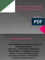 Tipologiilor Unitatii Economice