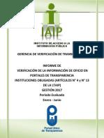 Informe Enero a Junio 2017 IAIP GVT