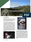 Cavidades de Sierra Blanca, Marbella (AS29)