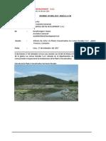 Informe Planta Concentradora Las Lomas Doradas 2017