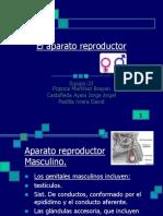 Anatoy Fisio Genitales Masc. y Fem.