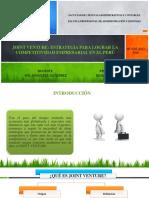 Joint Venture Resumen