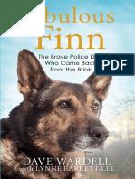 Fabulous Finn - Chapter 1