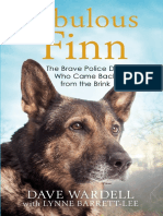 Fabulous Finn - Chapter 2 Extract