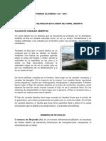 NUMERO_DE_REYNOLDS_EN_FLUIDOS_DE_CANAL_A.docx