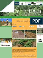 Mali saveti za sadnju krompira.pdf