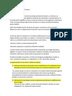 (14) LA-VIOLENCIA-NAZI.docx